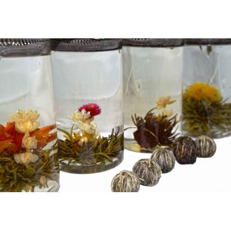 Flowering Tea Selection Pack